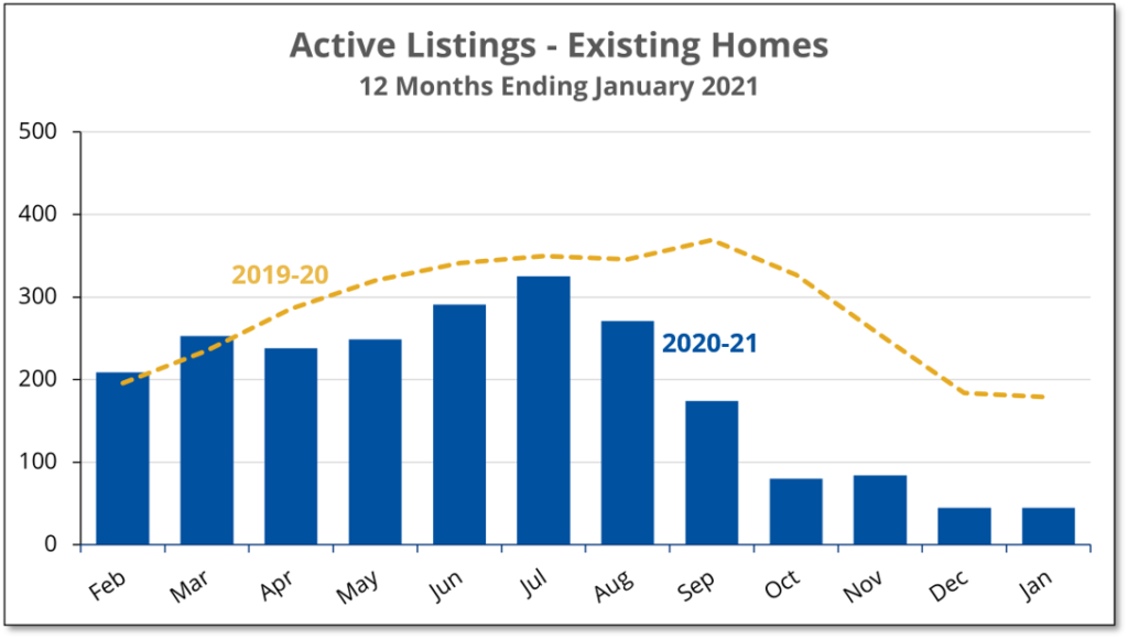 Chart shows that January 2021 active listings in Prince Edward County were less that 1/4th the number a year earlier.